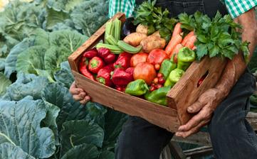 Menys carn i més producte de proximitat = Menys escalfament