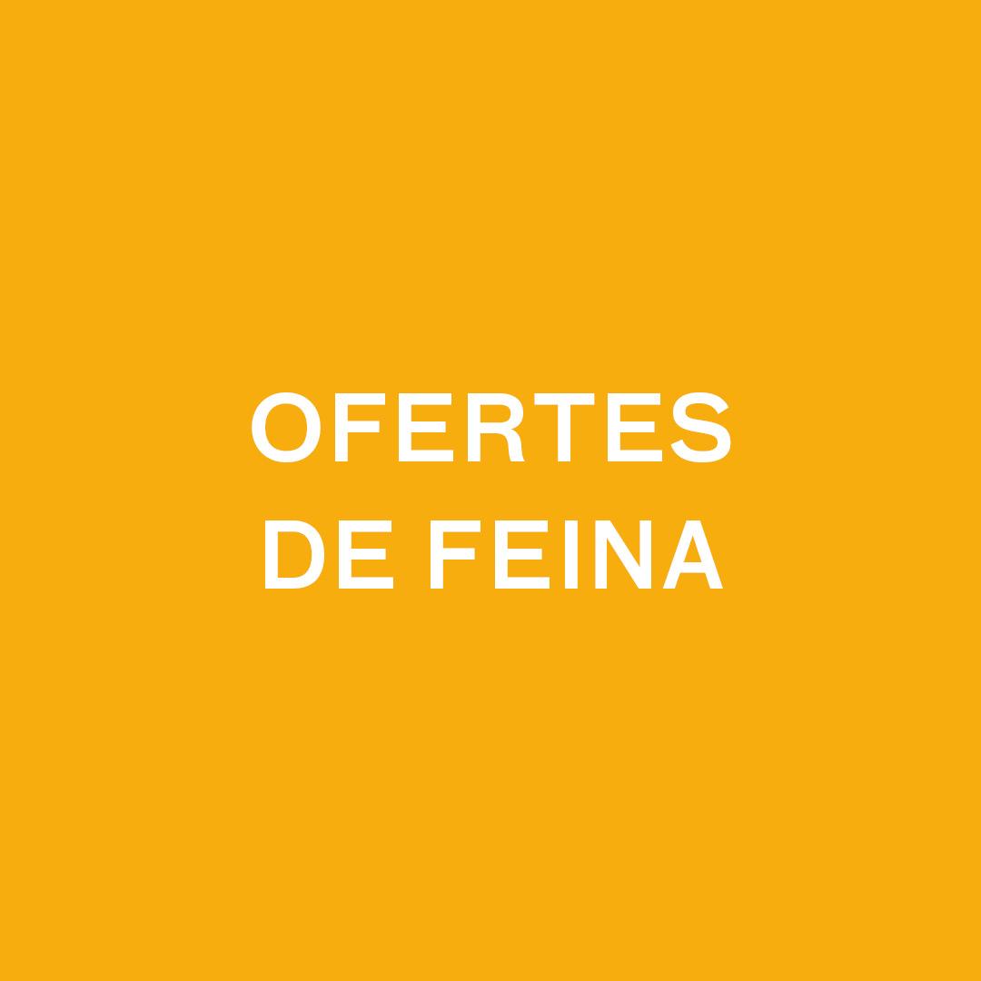 OFERTES DE FEINA