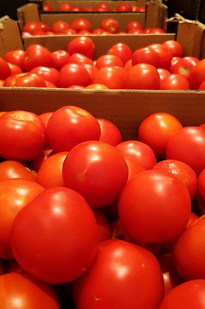 Elaborando tomate frito. Qué tendrá que no tengan otros...? Descúbrelo